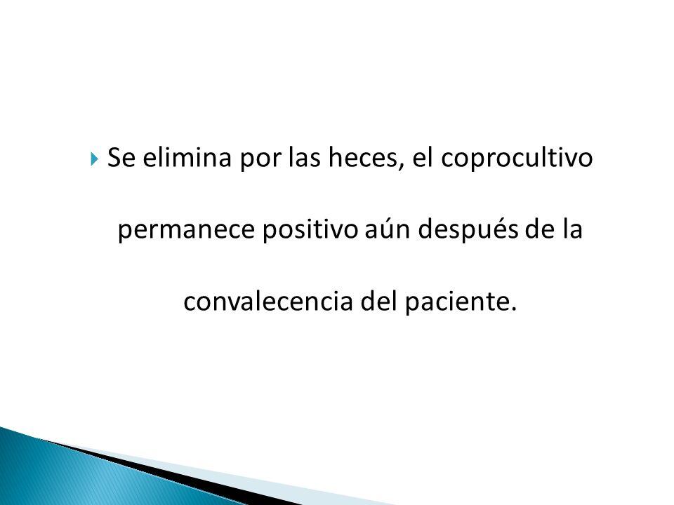  Se elimina por las heces, el coprocultivo permanece positivo aún después de la convalecencia del paciente.