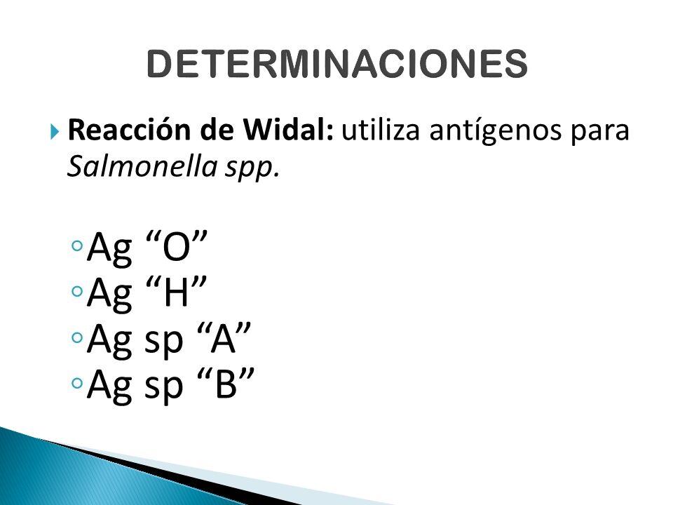  Reacción de Widal: utiliza antígenos para Salmonella spp.