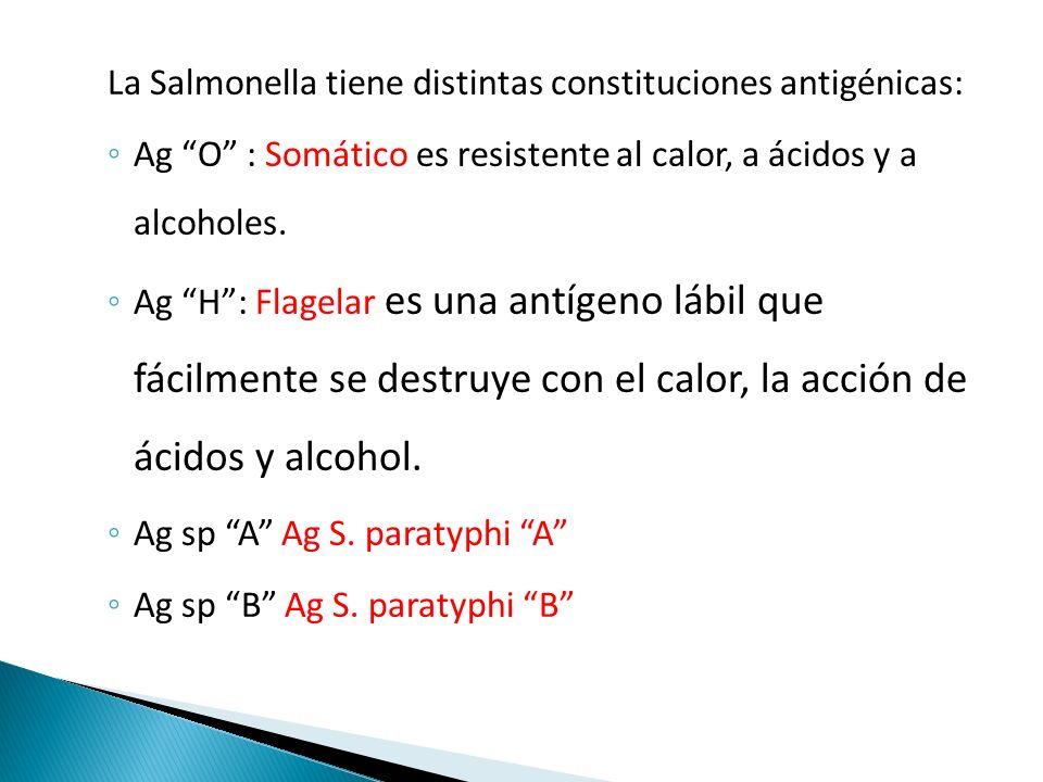 La Salmonella tiene distintas constituciones antigénicas: ◦ Ag O : Somático es resistente al calor, a ácidos y a alcoholes.