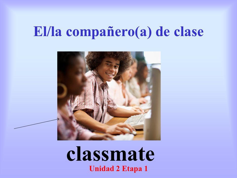 El/la compañero(a) de clase Unidad 2 Etapa 1 classmate
