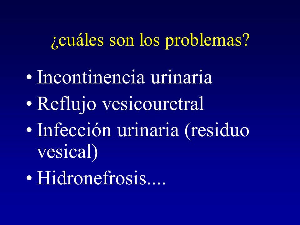¿cuáles son los problemas? Incontinencia urinaria Reflujo vesicouretral Infección urinaria (residuo vesical) Hidronefrosis....