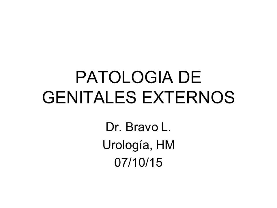 Genitales externos Los órganos genitales masculinos están formados por el pene, los testículos, el escroto, la próstata y las vesículas seminales.