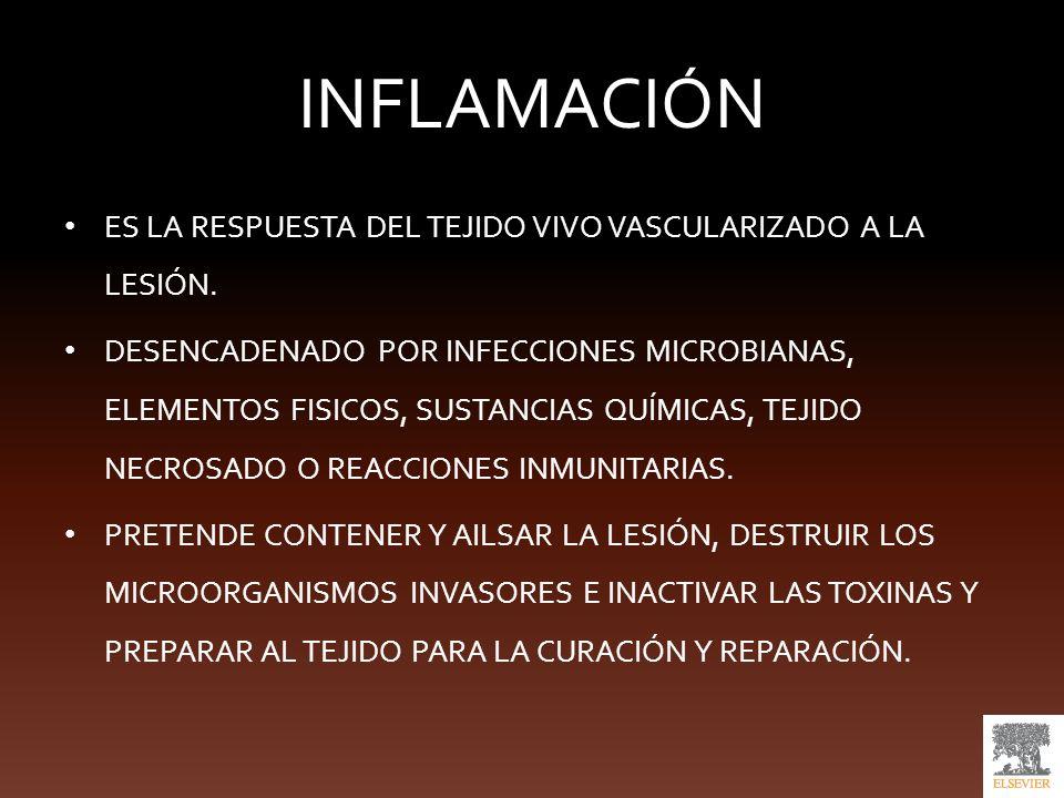Evolucíon de la inflamación aguda Resolución completa Cicatrización mediante tejido conjuntivo (fibrosis) Progresión a inflamación crónica