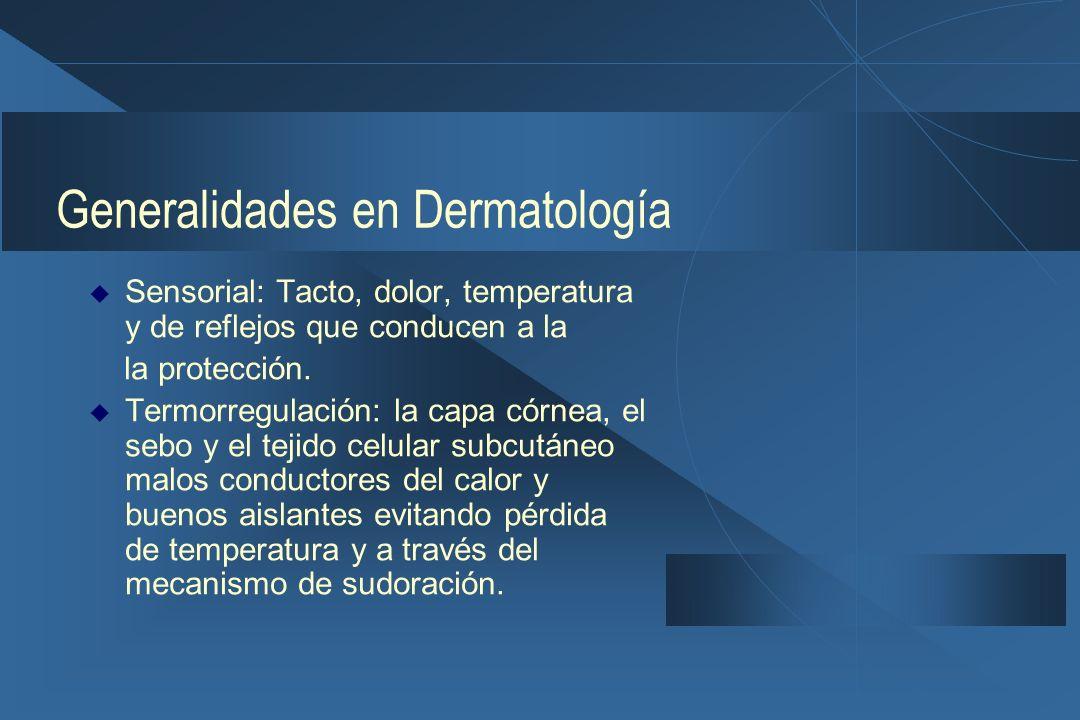 Generalidades en Dermatología  Sensorial: Tacto, dolor, temperatura y de reflejos que conducen a la la protección.