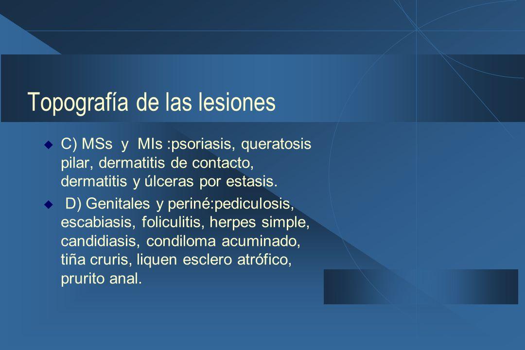 Topografía de las lesiones  C) MSs y MIs :psoriasis, queratosis pilar, dermatitis de contacto, dermatitis y úlceras por estasis.