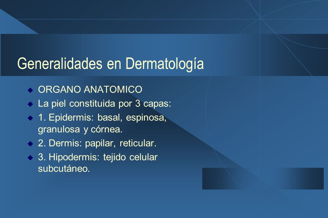 Generalidades en Dermatología  ORGANO ANATOMICO  La piel constituida por 3 capas:  1.