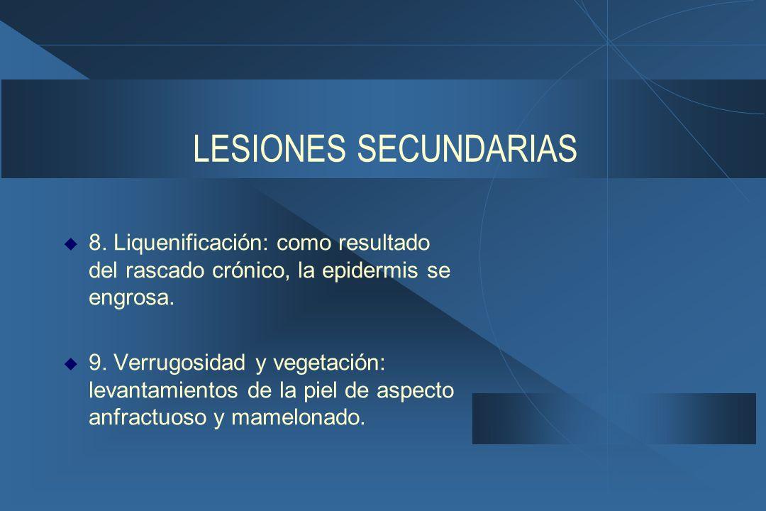 LESIONES SECUNDARIAS  8.