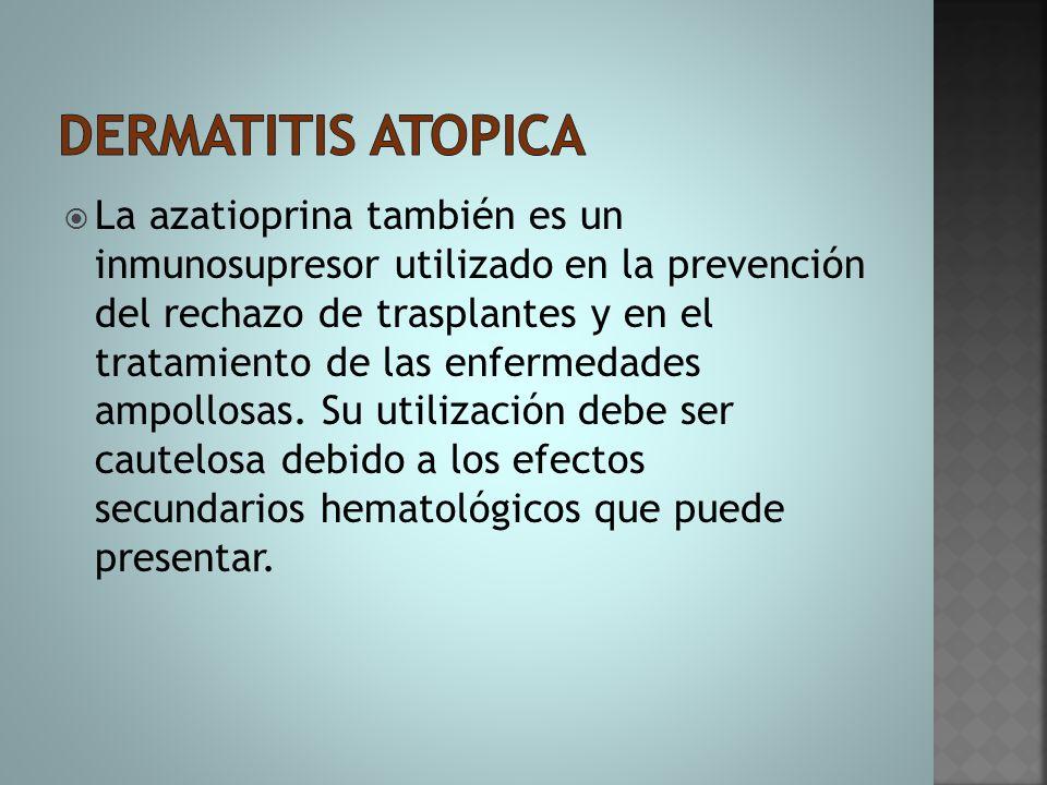  La azatioprina también es un inmunosupresor utilizado en la prevención del rechazo de trasplantes y en el tratamiento de las enfermedades ampollosas