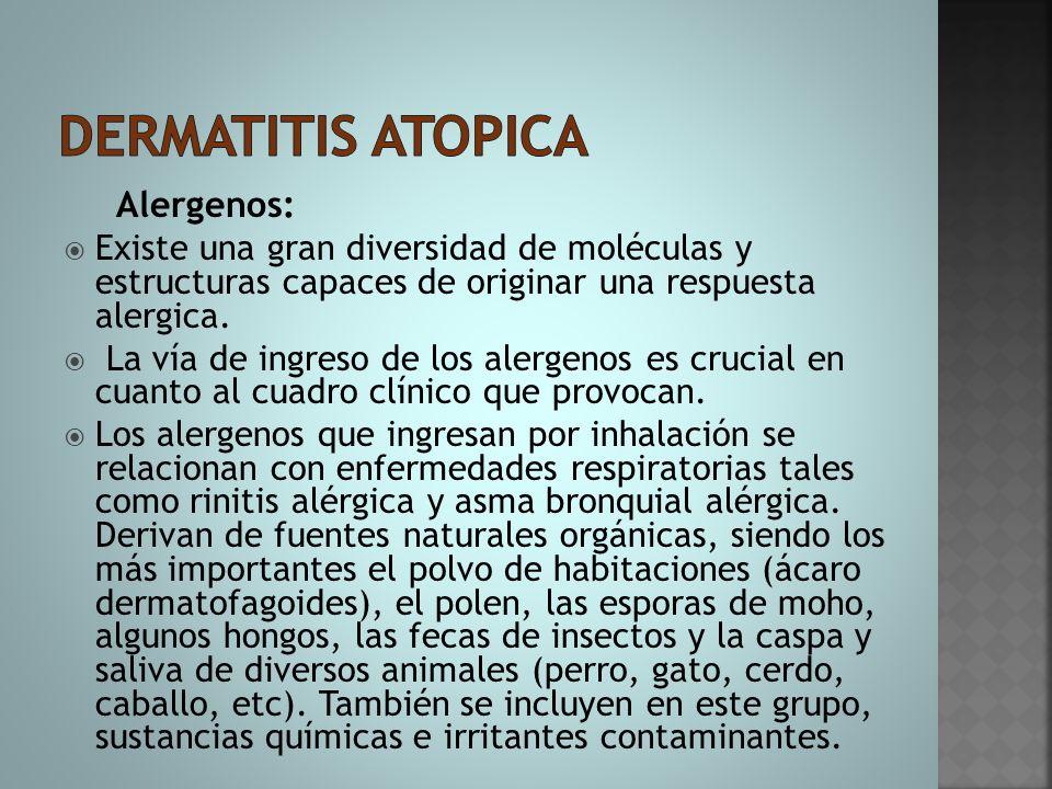 Alergenos:  Existe una gran diversidad de moléculas y estructuras capaces de originar una respuesta alergica.  La vía de ingreso de los alergenos es