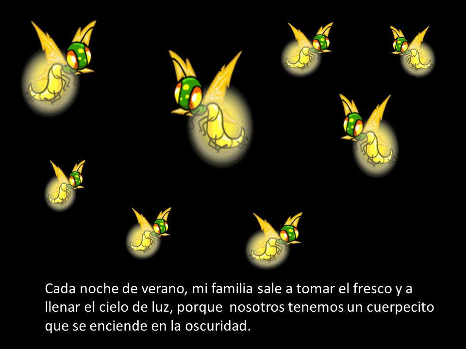 Te quiero enseñar una fotografía que saqué con mi móvil del cielo lleno de los miembros de mi familia volando en la noche.