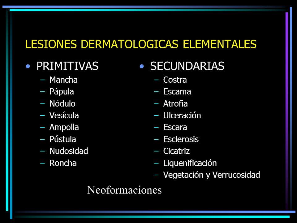 CLASIFICACION DE LESIONES ELEMENTALES Primitivas: Ocurren en la piel sin ninguna otra alteración.
