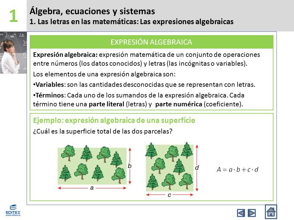 Álgebra, ecuaciones y sistemas 1. Las letras en las matemáticas: Las expresiones algebraicas 1 Expresión algebraica: expresión matemática de un conjun