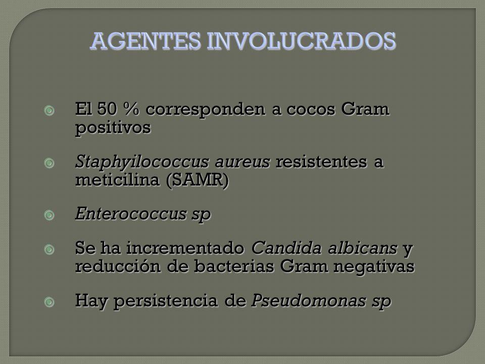  El 50 % corresponden a cocos Gram positivos  Staphyilococcus aureus resistentes a meticilina (SAMR)  Enterococcus sp  Se ha incrementado Candida albicans y reducción de bacterias Gram negativas  Hay persistencia de Pseudomonas sp