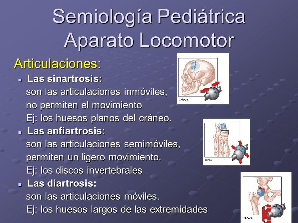 Semiología Pediátrica Aparato Locomotor Sistema muscular -Músculos fusiformes.