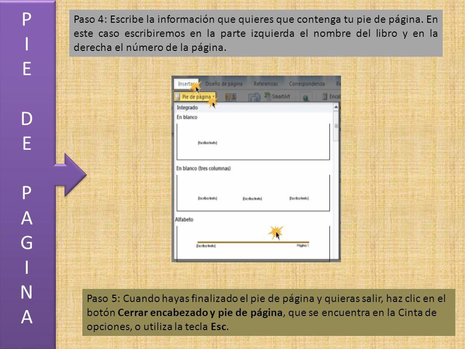 Paso 4: Escribe la información que quieres que contenga tu pie de página.