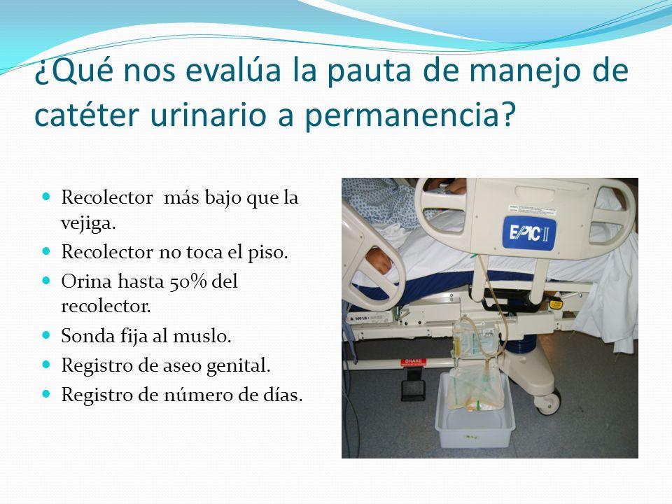 ¿Qué nos evalúa la pauta de manejo de catéter urinario a permanencia.