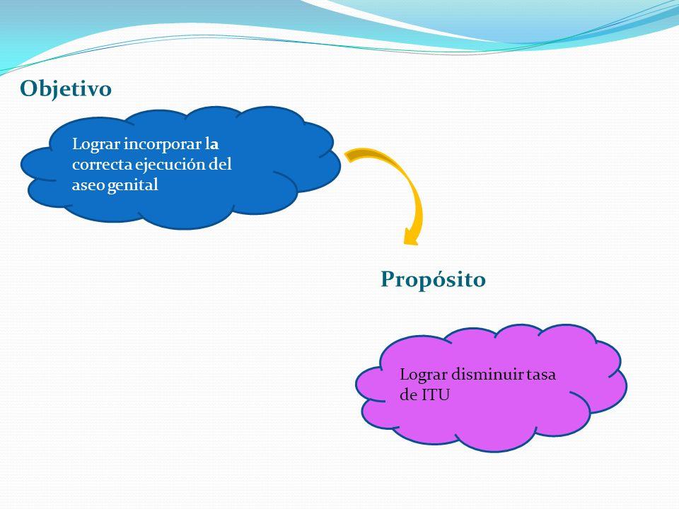 Objetivo Propósito Lograr incorporar la correcta ejecución del aseo genital Lograr disminuir tasa de ITU