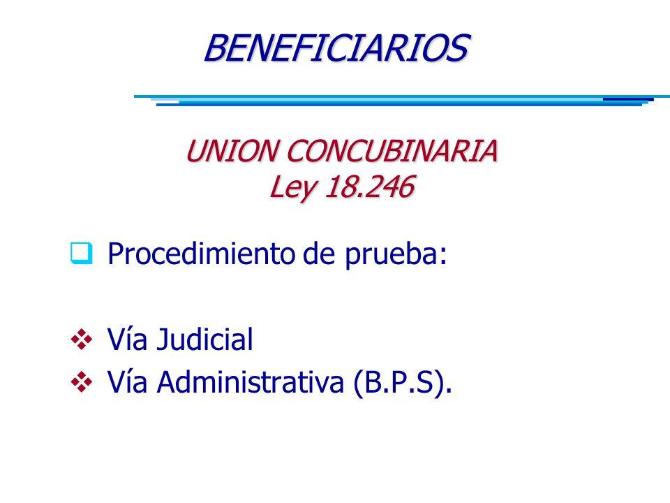  Procedimiento de prueba:  Vía Judicial  Vía Administrativa (B.P.S).