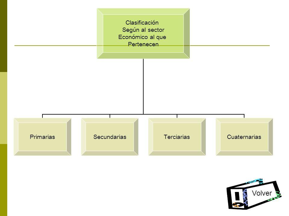 Clasificación Según al sector Económico al que Pertenecen PrimariasSecundariasTerciariasCuaternarias Volver