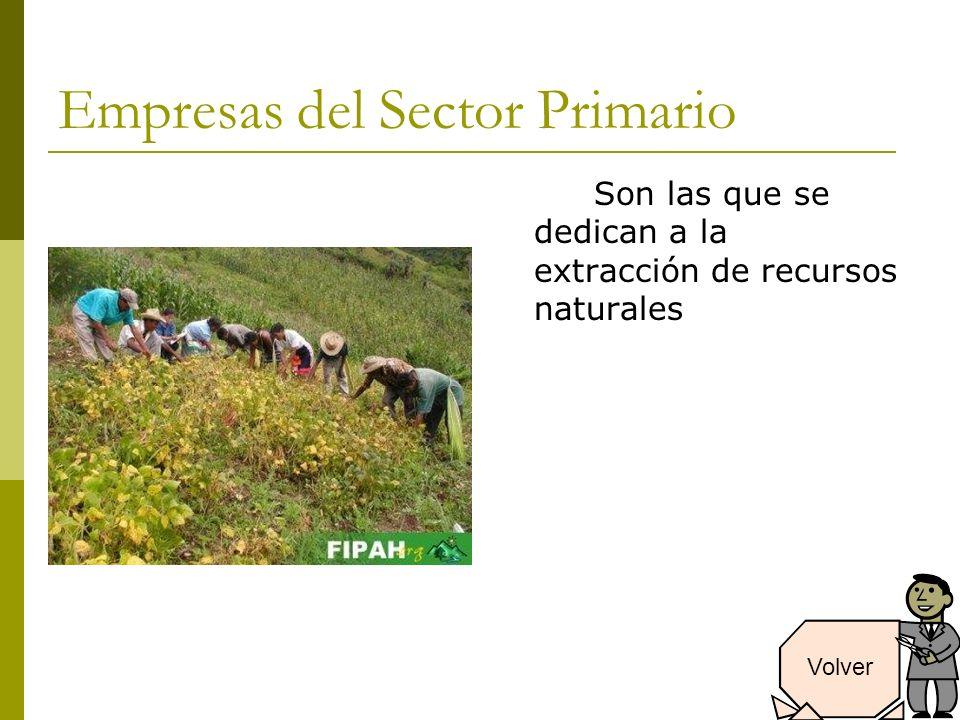 Empresas del Sector Primario Son las que se dedican a la extracción de recursos naturales Volver