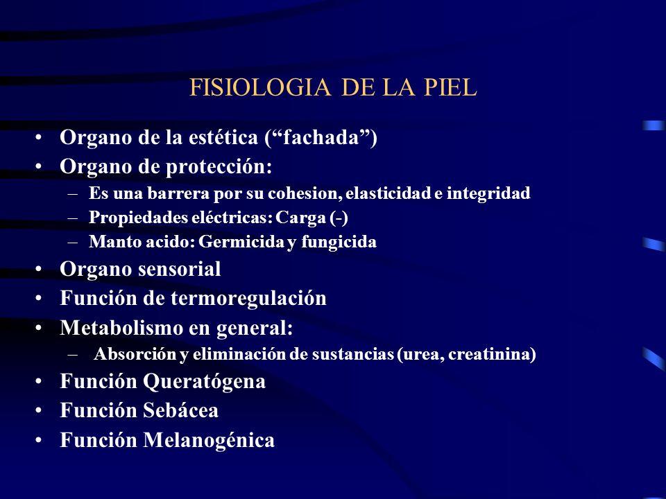 COMPONENTES QUIMICOS DE LA PIEL Agua Electrolitos: Cl, Na, K, Mg. y Ca. Otros minerales: Azufre (radical sulfidrilo), P, Pb, Mg, Fe, Cu y otros en men