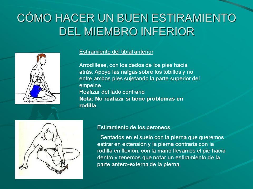 CÓMO HACER UN BUEN ESTIRAMIENTO DEL MIEMBRO INFERIOR Estiramiento del tibial anterior Arrodíllese, con los dedos de los pies hacia atrás. Apoye las na