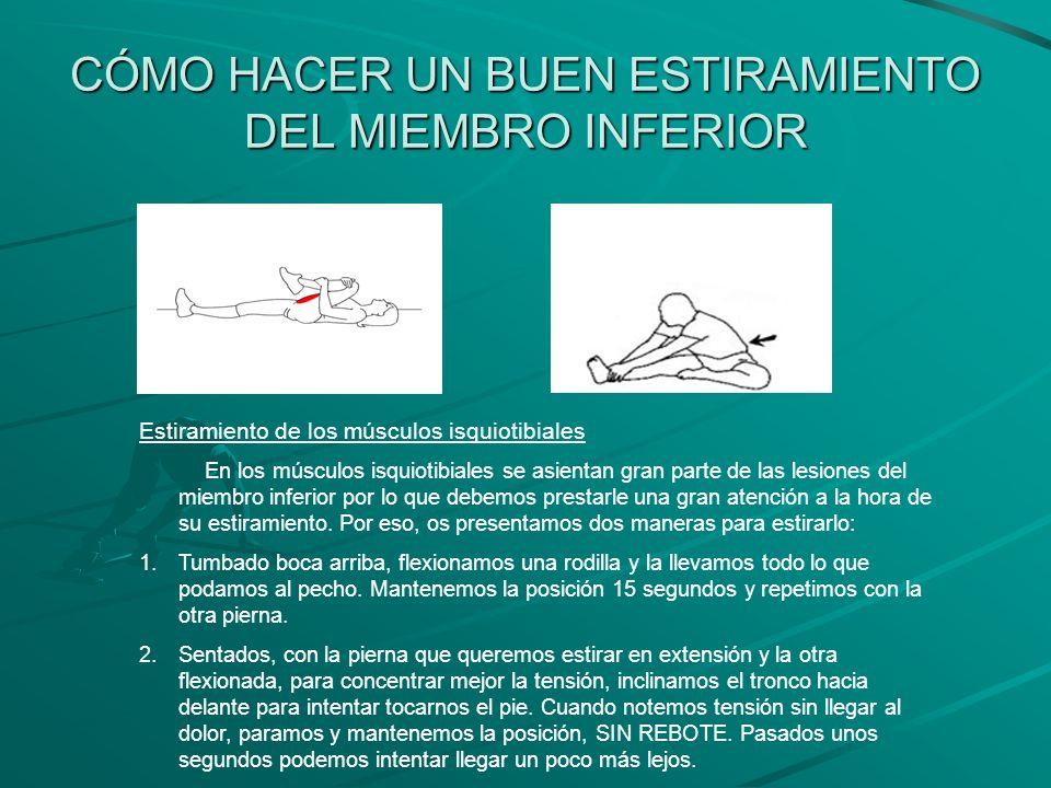 CÓMO HACER UN BUEN ESTIRAMIENTO DEL MIEMBRO INFERIOR Estiramiento de los músculos isquiotibiales En los músculos isquiotibiales se asientan gran parte