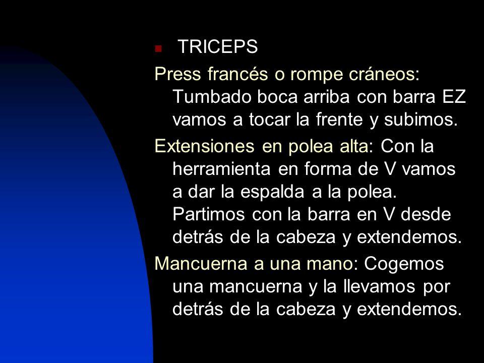 TRICEPS Press francés o rompe cráneos: Tumbado boca arriba con barra EZ vamos a tocar la frente y subimos.
