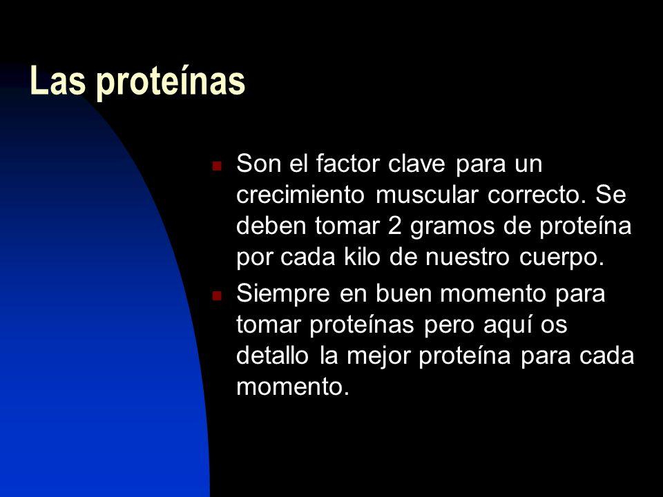 Las proteínas Son el factor clave para un crecimiento muscular correcto.