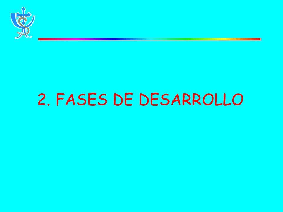 2. FASES DE DESARROLLO