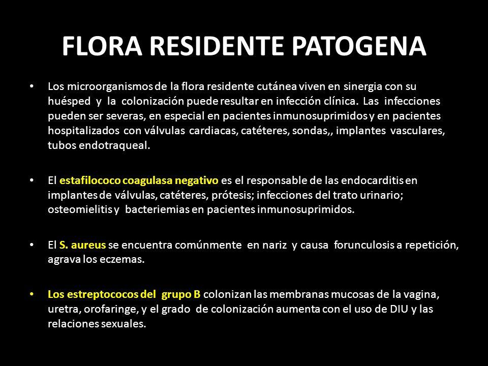 FLORA RESIDENTE PATOGENA Los microorganismos de la flora residente cutánea viven en sinergia con su huésped y la colonización puede resultar en infección clínica.