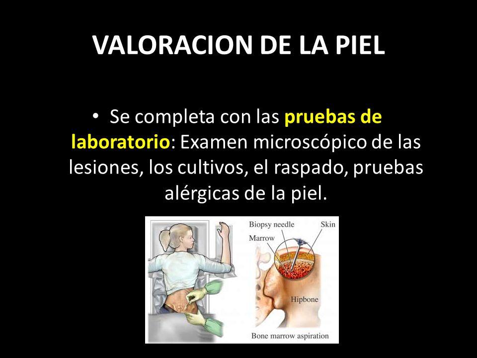 VALORACION DE LA PIEL Se completa con las pruebas de laboratorio: Examen microscópico de las lesiones, los cultivos, el raspado, pruebas alérgicas de la piel.