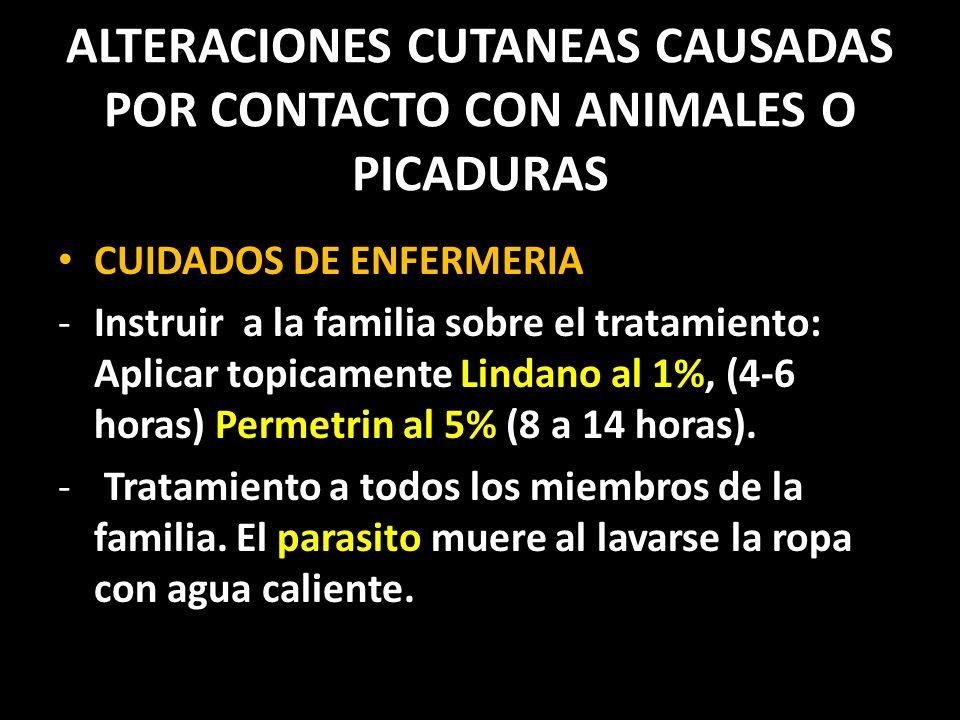 ALTERACIONES CUTANEAS CAUSADAS POR CONTACTO CON ANIMALES O PICADURAS CUIDADOS DE ENFERMERIA -Instruir a la familia sobre el tratamiento: Aplicar topicamente Lindano al 1%, (4-6 horas) Permetrin al 5% (8 a 14 horas).