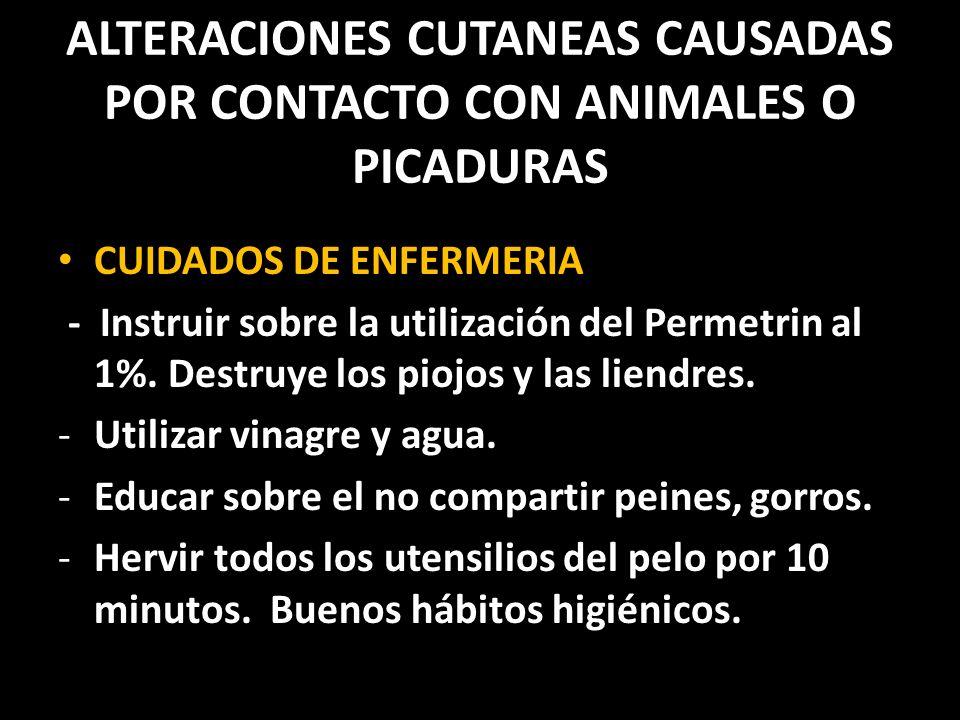ALTERACIONES CUTANEAS CAUSADAS POR CONTACTO CON ANIMALES O PICADURAS CUIDADOS DE ENFERMERIA - Instruir sobre la utilización del Permetrin al 1%.