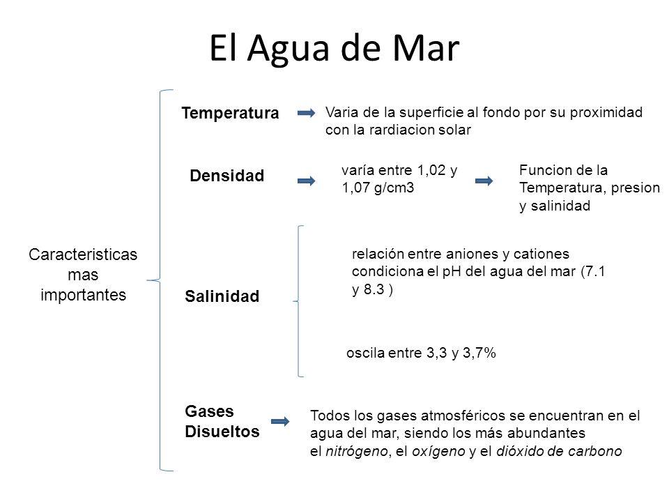 Resultat d'imatges de densitat/concentració aigua de mar