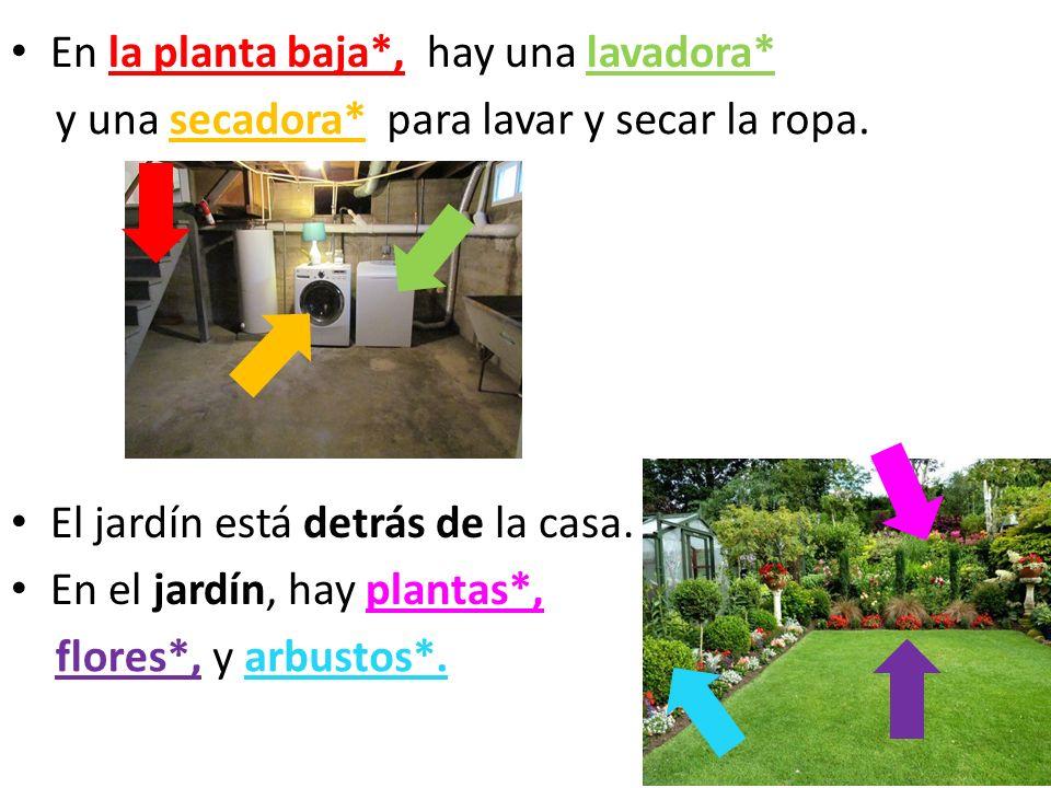 En la planta baja*, El jardín está detrás de la casa. En el jardín, hay plantas*, hay una lavadora* y una secadora*para lavar y secar la ropa. flores*