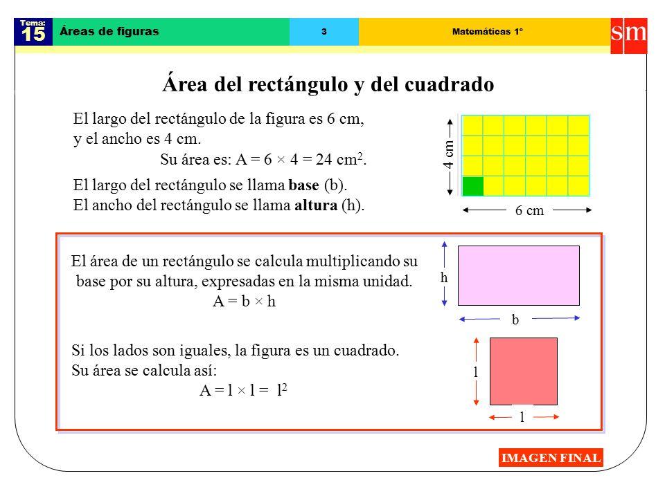 Tema: 15 Áreas de figuras 3Matemáticas 1º Área del rectángulo y del cuadrado El largo del rectángulo de la figura es 6 cm, y el ancho es 4 cm.