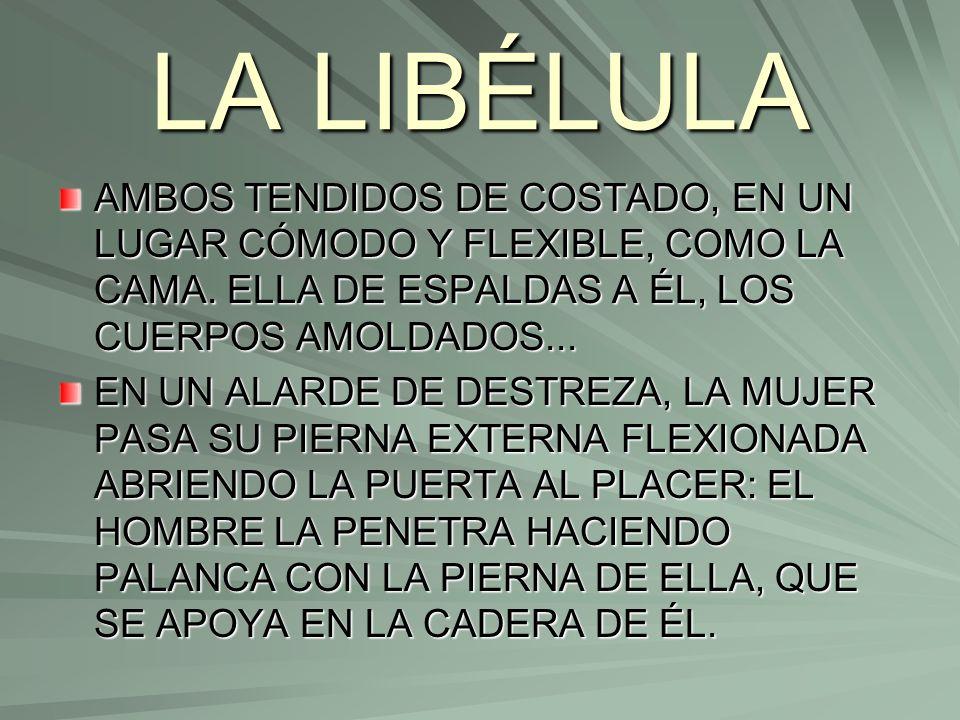 LA LIBÉLULA AMBOS TENDIDOS DE COSTADO, EN UN LUGAR CÓMODO Y FLEXIBLE, COMO LA CAMA. ELLA DE ESPALDAS A ÉL, LOS CUERPOS AMOLDADOS... EN UN ALARDE DE DE