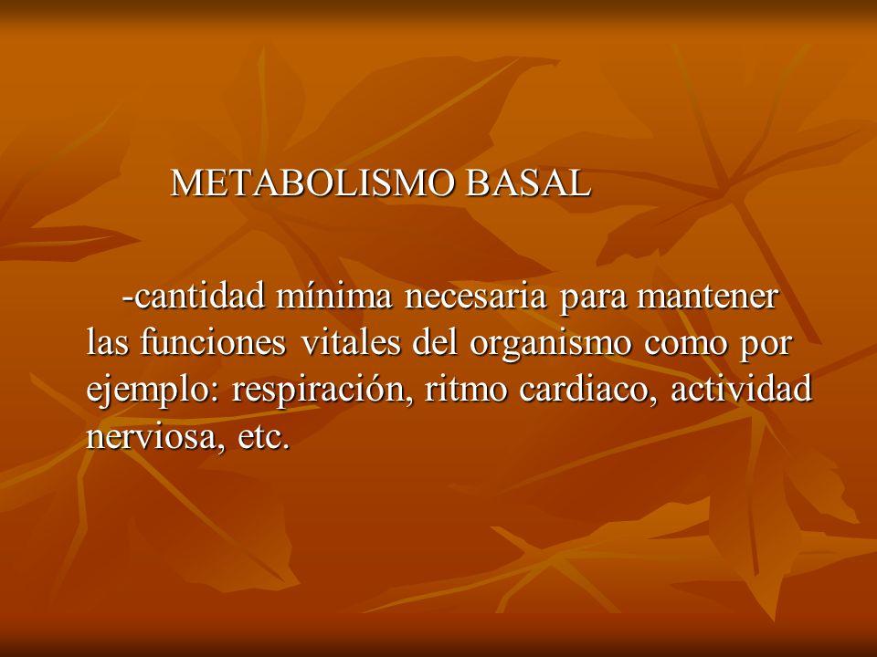 METABOLISMO BASAL METABOLISMO BASAL -cantidad mínima necesaria para mantener las funciones vitales del organismo como por ejemplo: respiración, ritmo cardiaco, actividad nerviosa, etc.
