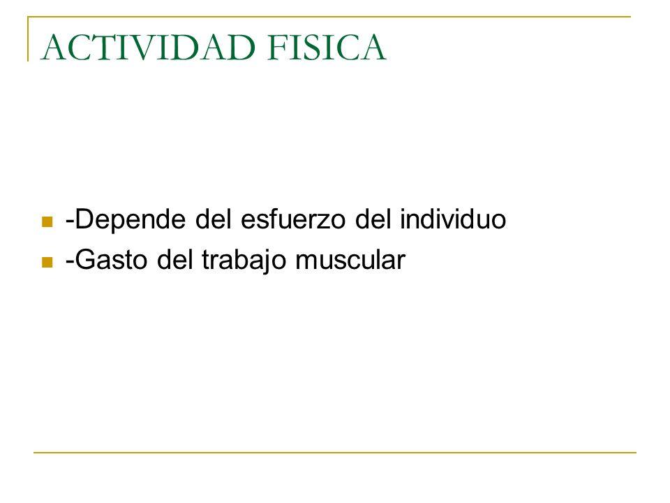 ACTIVIDAD FISICA -Depende del esfuerzo del individuo -Gasto del trabajo muscular