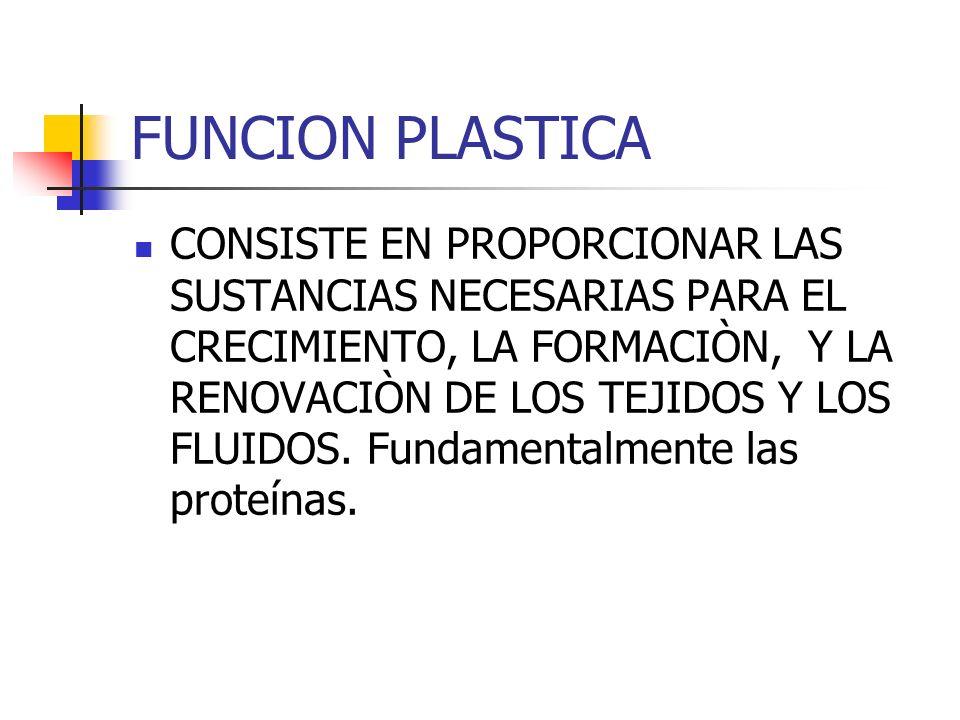 FUNCION PLASTICA CONSISTE EN PROPORCIONAR LAS SUSTANCIAS NECESARIAS PARA EL CRECIMIENTO, LA FORMACIÒN, Y LA RENOVACIÒN DE LOS TEJIDOS Y LOS FLUIDOS.