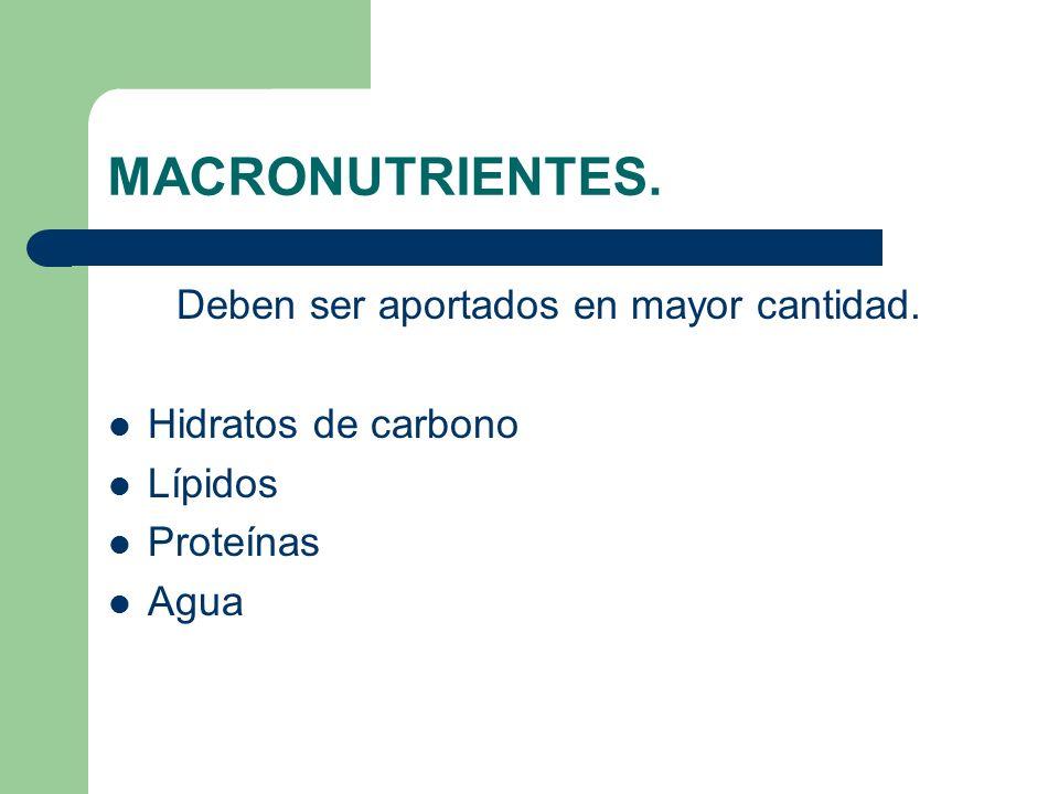 MICRONUTRIENTES Deben ser aportados en menor cantidad. Vitaminas Minerales