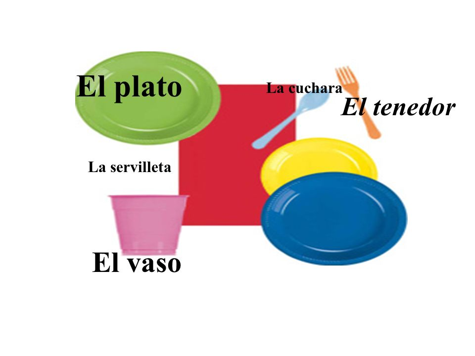 El plato El vaso El tenedor La cuchara La servilleta