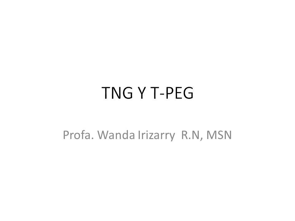 Profa. Wanda Irizarry R.N, MSN