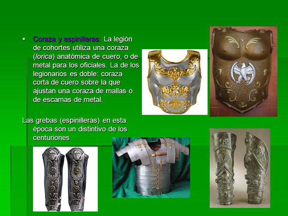  Coraza y espinilleras: La legión de cohortes utiliza una coraza (lorica) anatómica de cuero, o de metal para los oficiales.