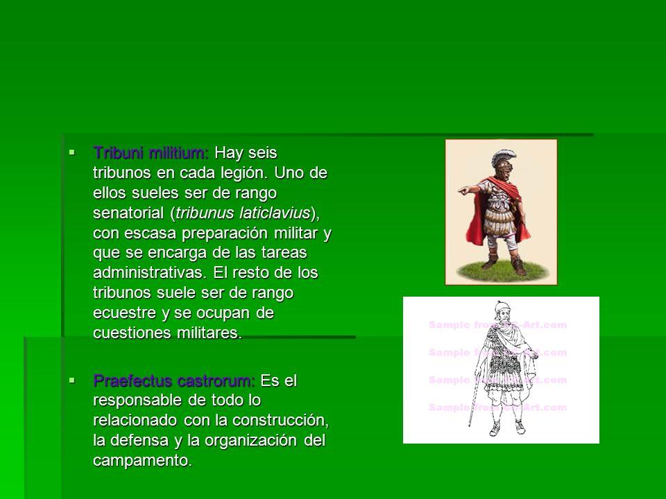  Tribuni militium: Hay seis tribunos en cada legión.