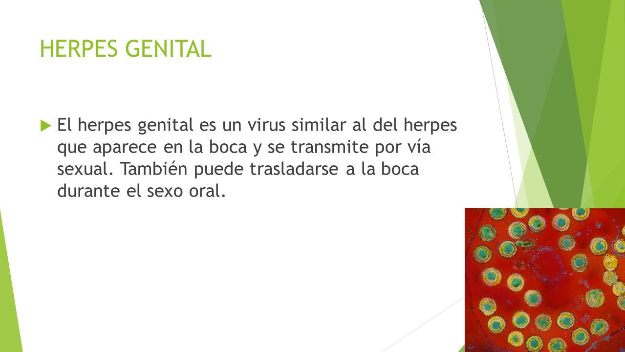 HERPES GENITAL  El herpes genital es un virus similar al del herpes que aparece en la boca y se transmite por vía sexual.