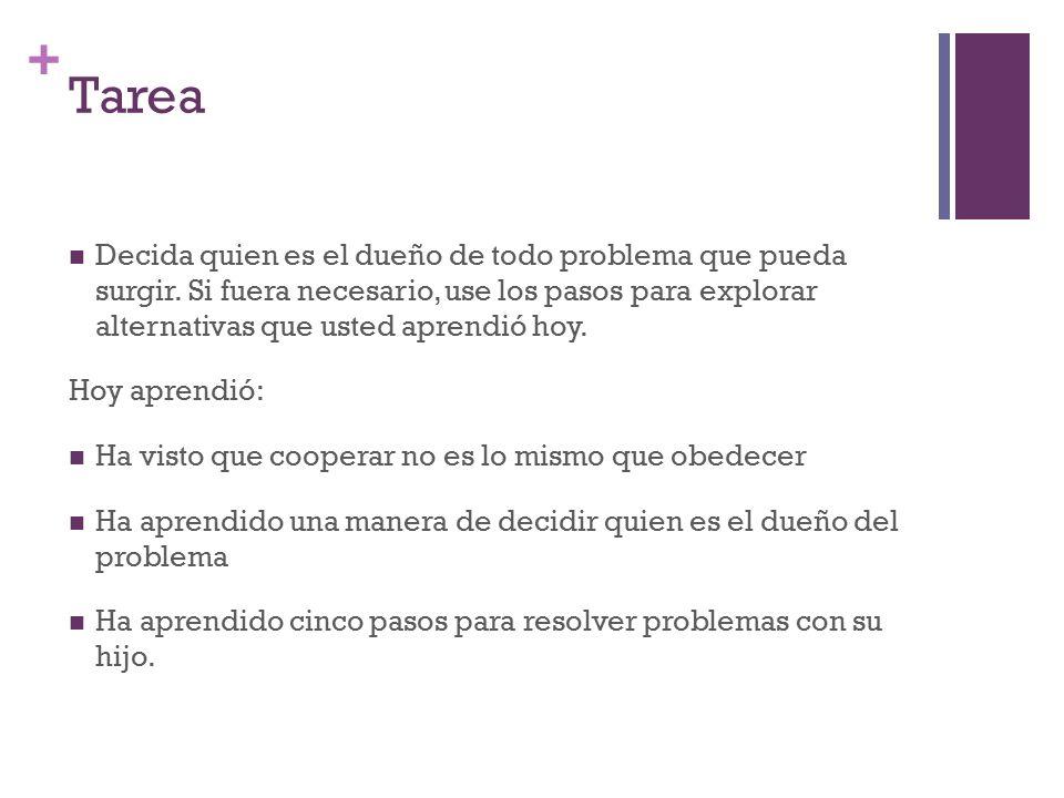 + Tarea Decida quien es el dueño de todo problema que pueda surgir.