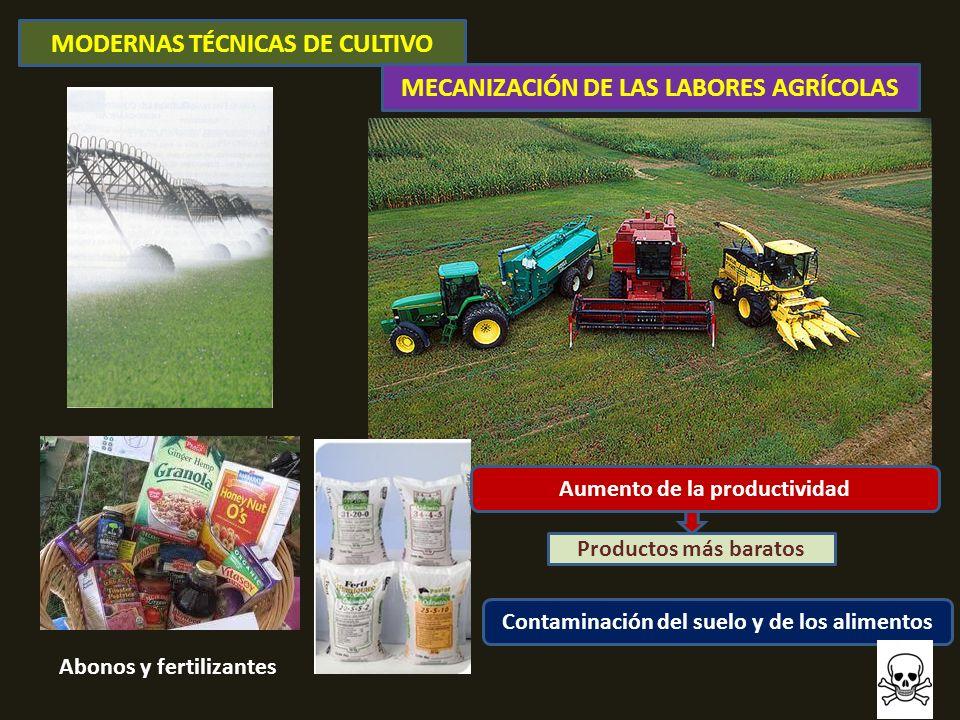 MODERNAS TÉCNICAS DE CULTIVO MECANIZACIÓN DE LAS LABORES AGRÍCOLAS Abonos y fertilizantes Aumento de la productividad Contaminación del suelo y de los alimentos Productos más baratos