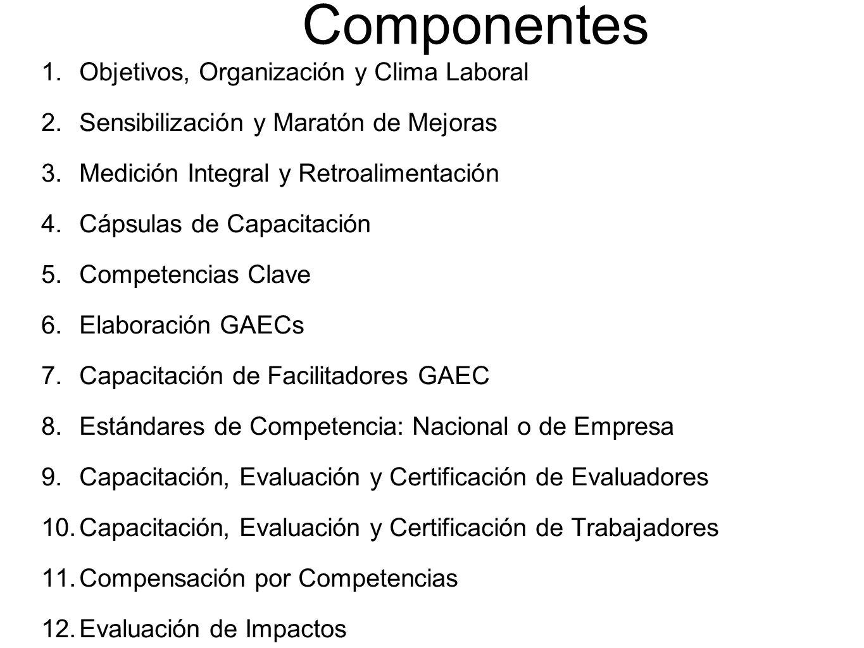 Componentes 1. Objetivos, Organización y Clima Laboral 2.